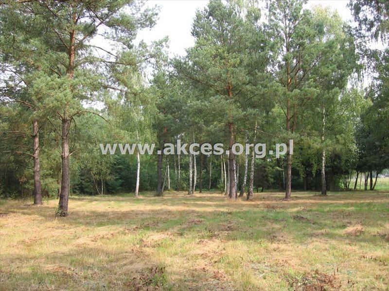 Działka budowlana na sprzedaż Budy-Grzybek, Księdza Baranowskiego  9554m2 Foto 3