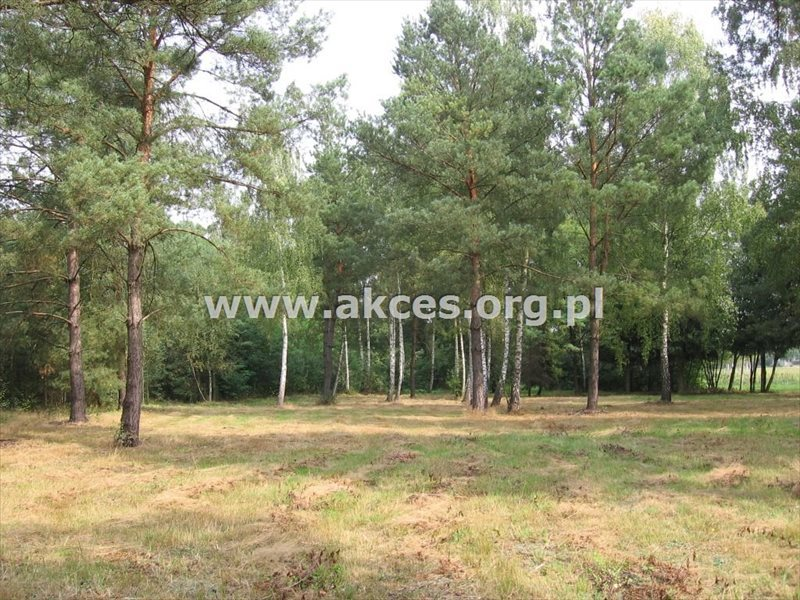 Działka budowlana na sprzedaż Jaktorów-Kolonia, Baranowskiego  2722m2 Foto 2
