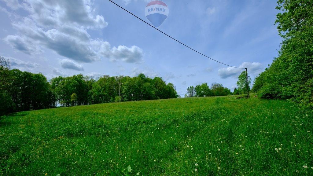 Działka rolna na sprzedaż Mazańcowice  14396m2 Foto 8