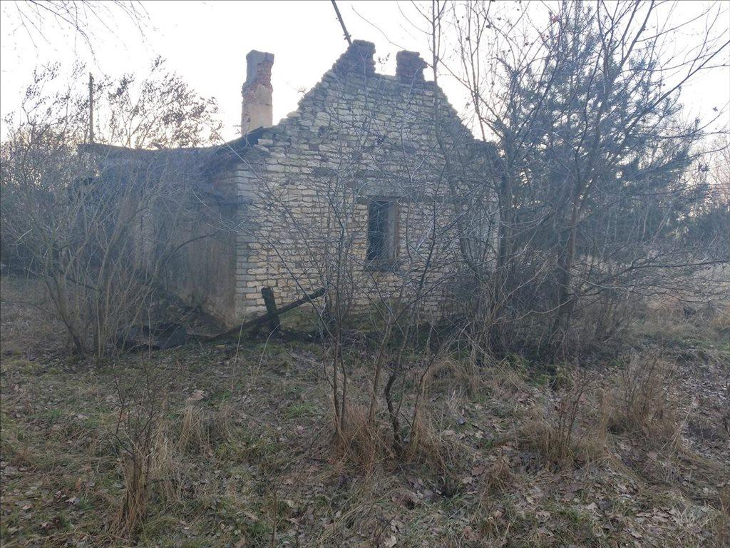 Działka budowlana na sprzedaż Borek, Wartkowice  11200m2 Foto 7