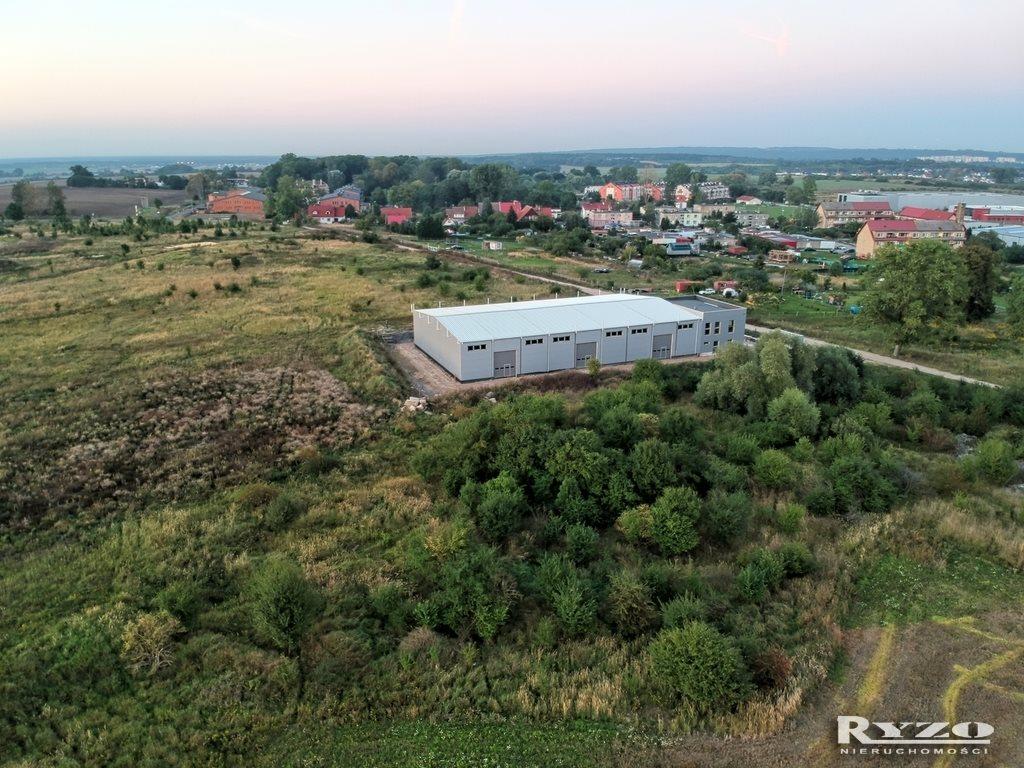 Działka komercyjna na sprzedaż Skarbimierzyce  8836m2 Foto 5