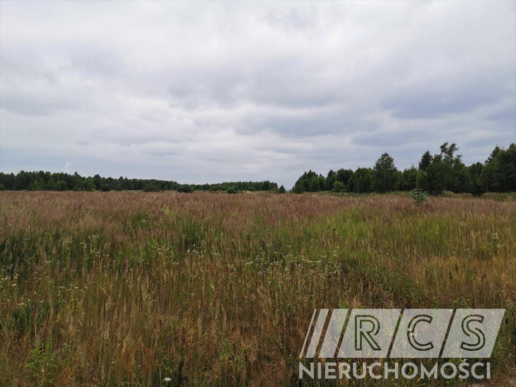 Działka rolna na sprzedaż Gniewomirowice, Kwiatowa  31218m2 Foto 5