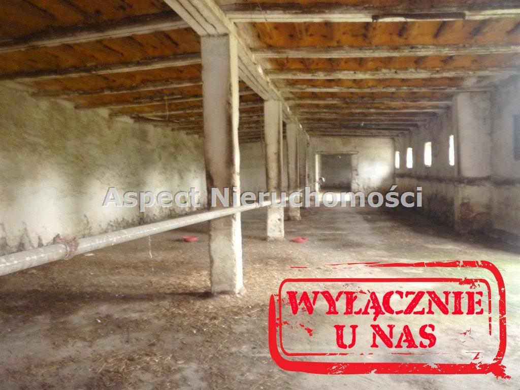 Działka przemysłowo-handlowa na sprzedaż Gawrony  12232m2 Foto 5
