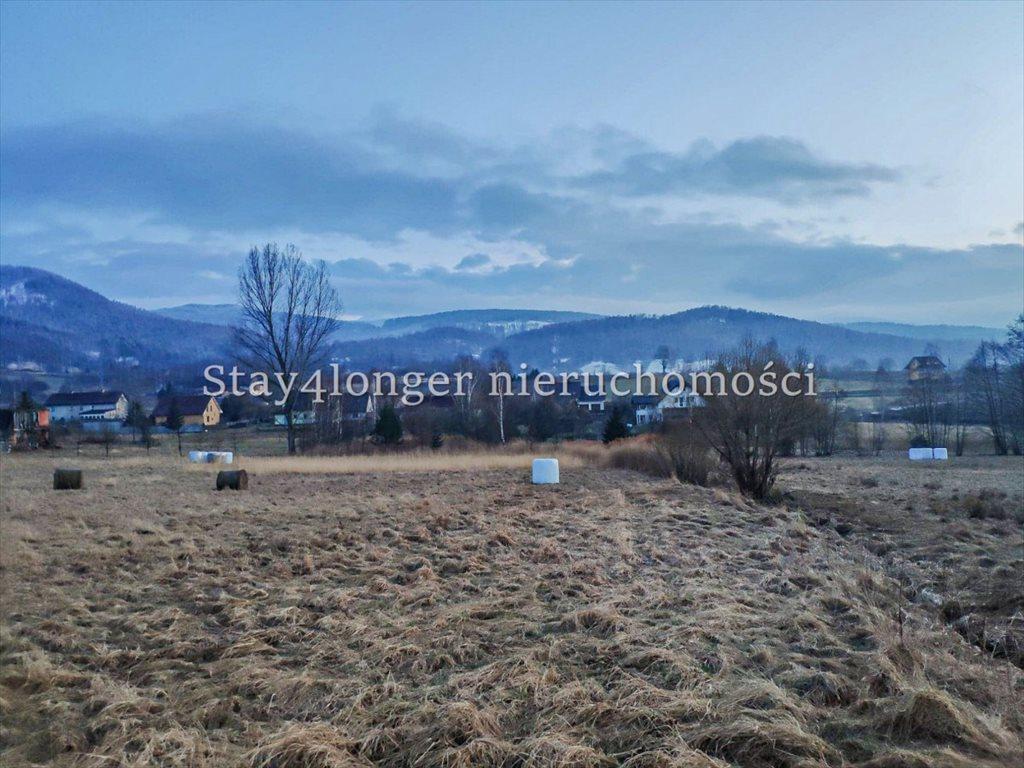 Działka rolna na sprzedaż Sosnówka  39742m2 Foto 3