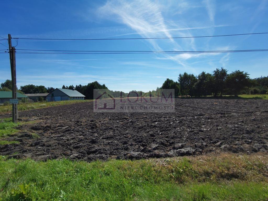 Działka rolna na sprzedaż Nowe Zawady  21600m2 Foto 2