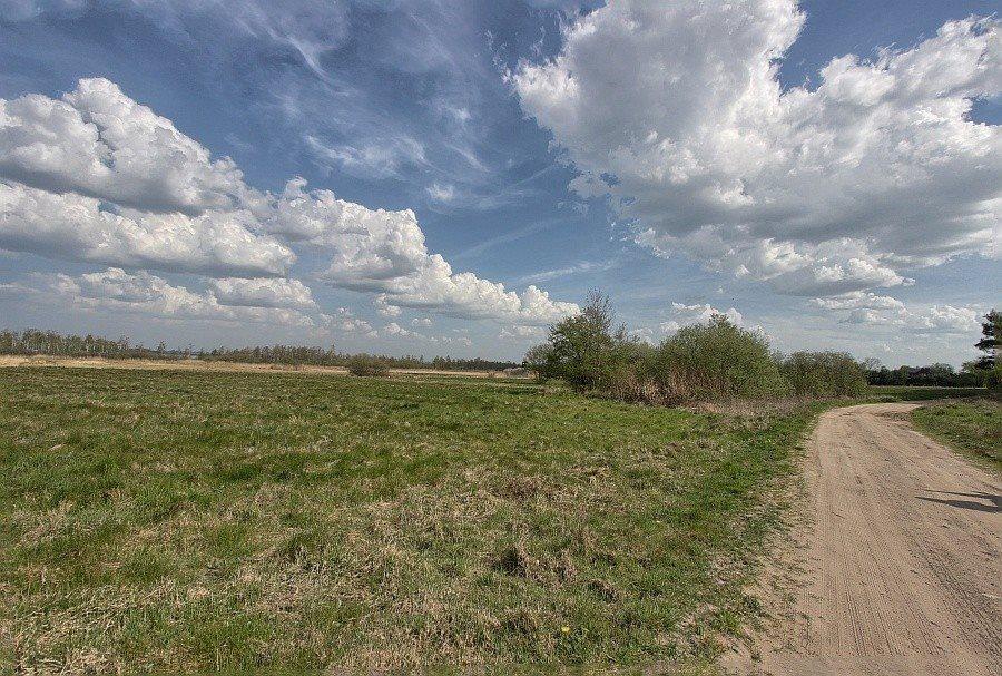 Działka rolna na sprzedaż Kołczewo  22223m2 Foto 6
