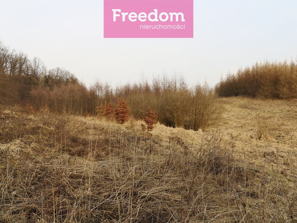 Działka leśna na sprzedaż Sobno  142300m2 Foto 11