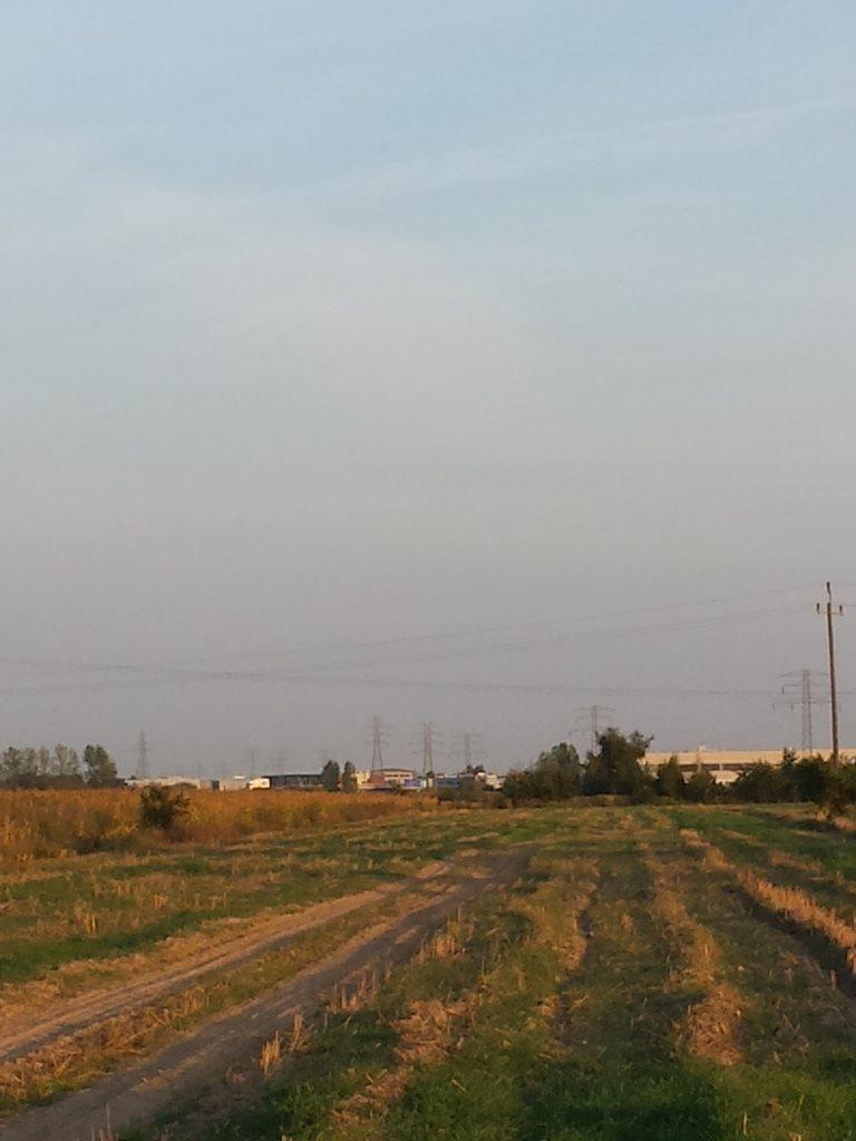 Działka przemysłowo-handlowa na sprzedaż Plewiska  11000m2 Foto 3