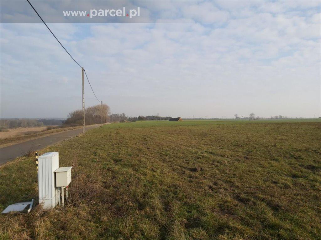 Działka budowlana na sprzedaż Jankowo, Jankowo  3001m2 Foto 3