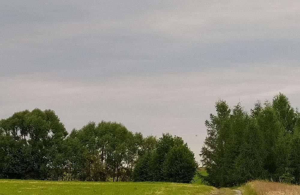 Działka rolna na sprzedaż Lipowa  7100m2 Foto 5