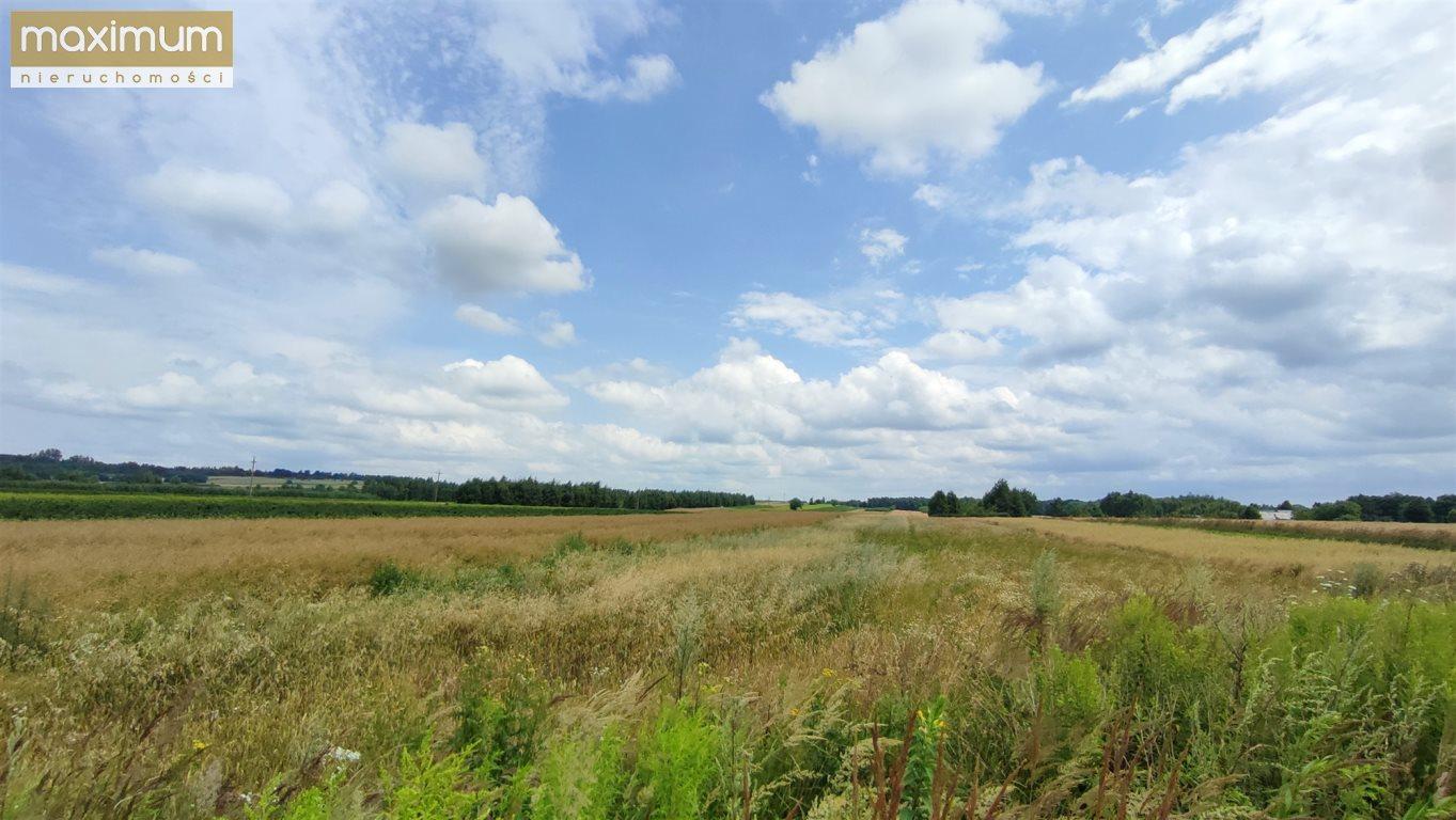 Działka rolna na sprzedaż Stara Wieś  18034m2 Foto 4