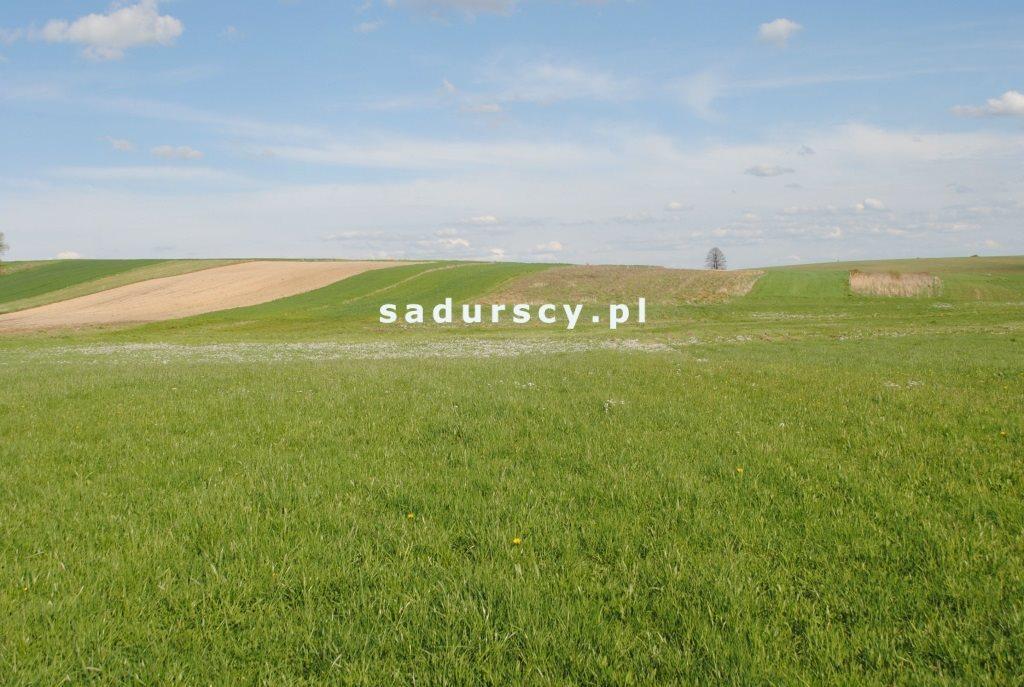 Działka rolna na sprzedaż Ściborzyce  34334m2 Foto 8