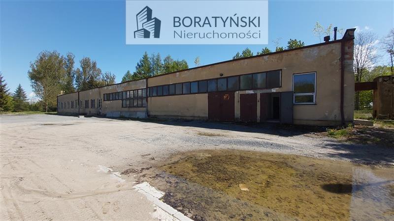 Działka przemysłowo-handlowa na sprzedaż Skibno, Skibno  37100m2 Foto 5