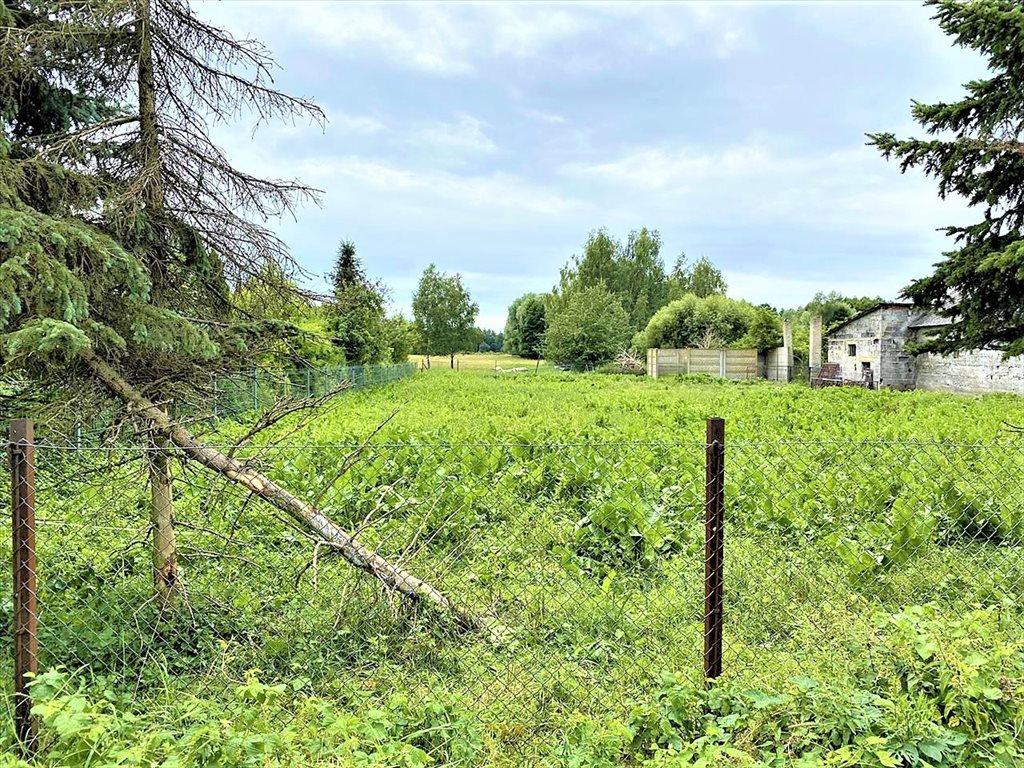 Działka rolna na sprzedaż Stare Budy Radziejowskie, Radziejowice  32300m2 Foto 5