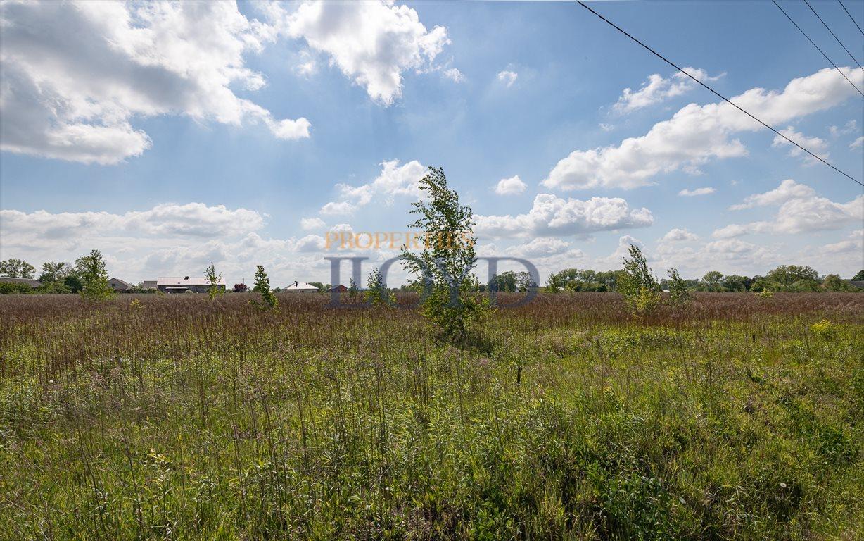 Działka rolna na sprzedaż Wola Wągrodzka, Ogrodowa  1000m2 Foto 2