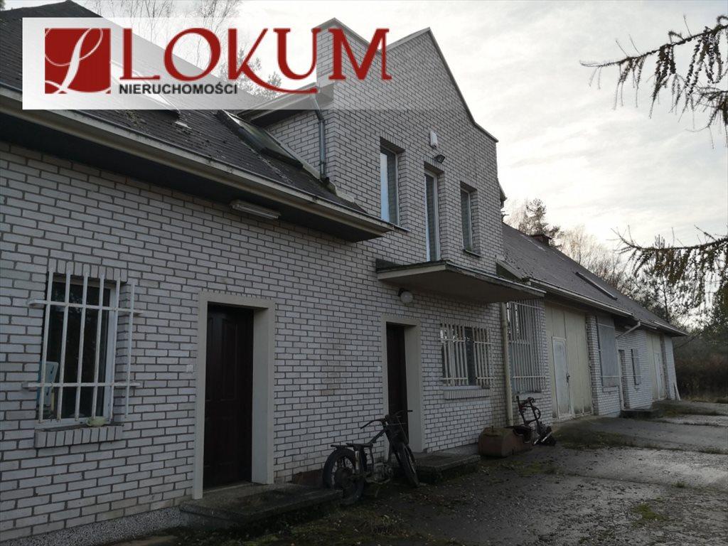Lokal użytkowy na sprzedaż Czapielsk, Tamaryszkowa  315m2 Foto 2