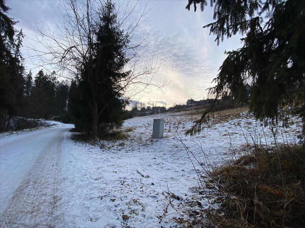 Działka rolna na sprzedaż Bukowina Tatrzańska, Bukowina Tatrzańska  2607m2 Foto 5