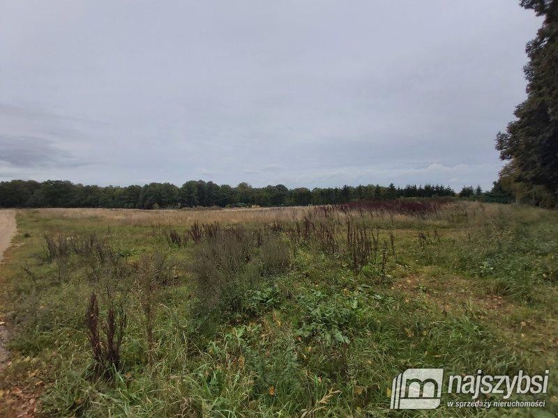 Działka inna na sprzedaż Bystrzyno, Wieś  1800m2 Foto 8
