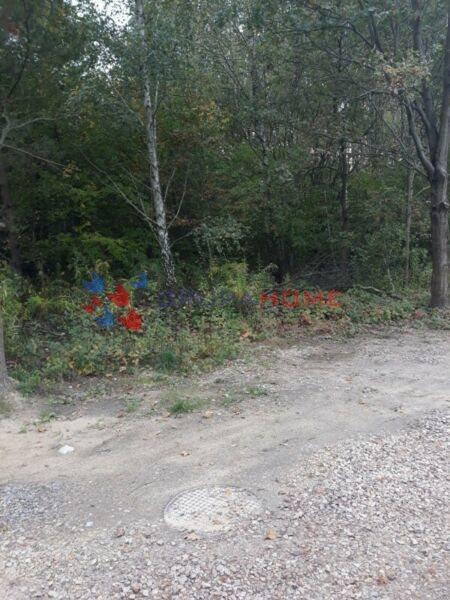 Działka budowlana na sprzedaż Kolonia Warszawska  1500m2 Foto 4