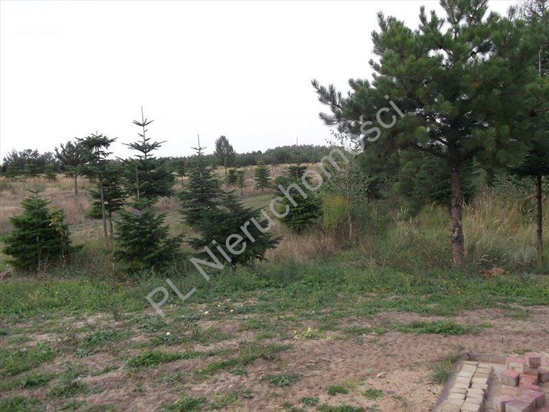 Działka rolna na sprzedaż Grzegorzewice  2443m2 Foto 1