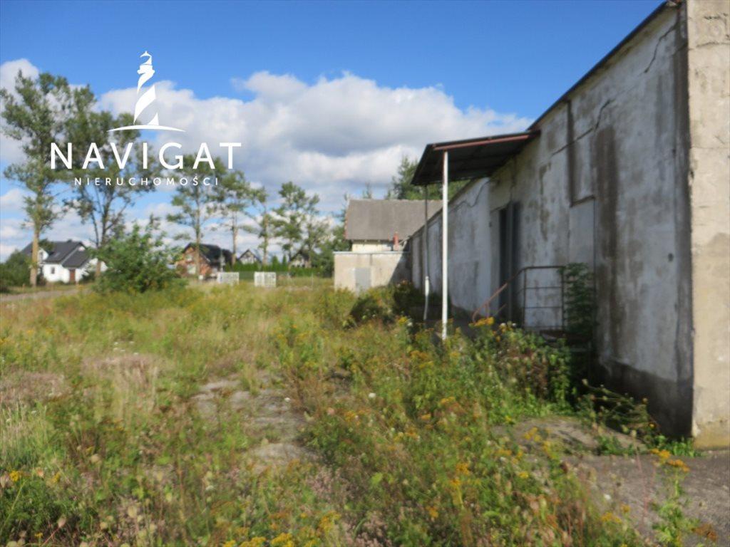 Lokal użytkowy na sprzedaż Linia  1800m2 Foto 2