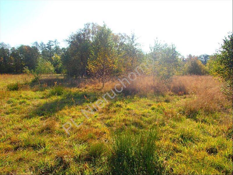 Działka rolna na sprzedaż Stanisławów  12800m2 Foto 9