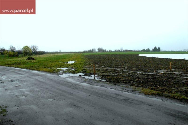 Działka budowlana na sprzedaż Sarbinowo  1100m2 Foto 2
