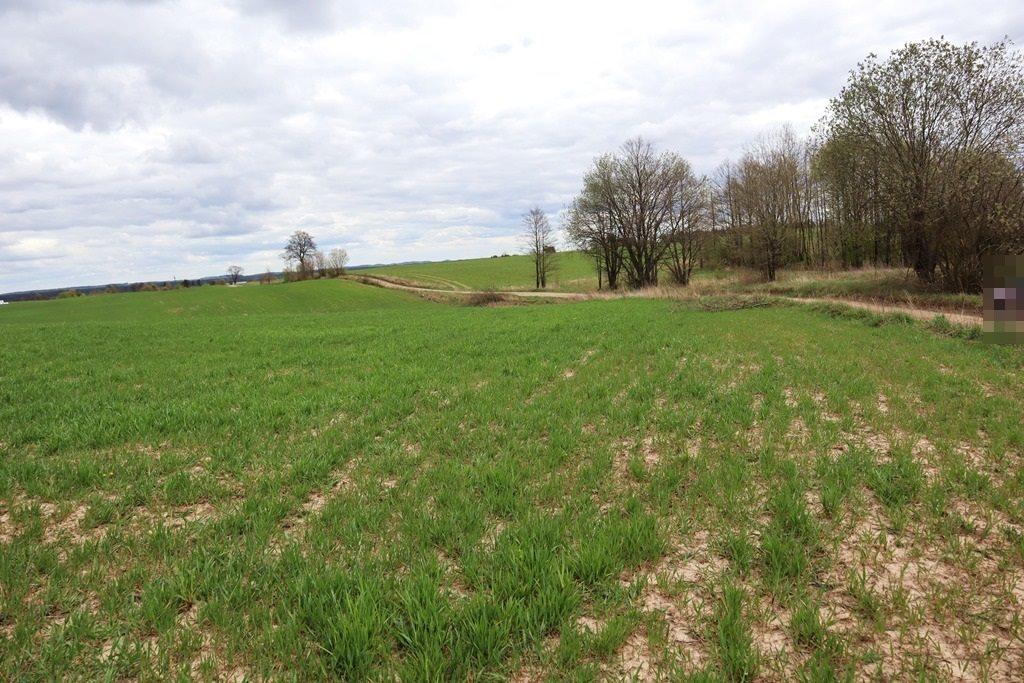 Działka rolna na sprzedaż Gorłówko  3883m2 Foto 7