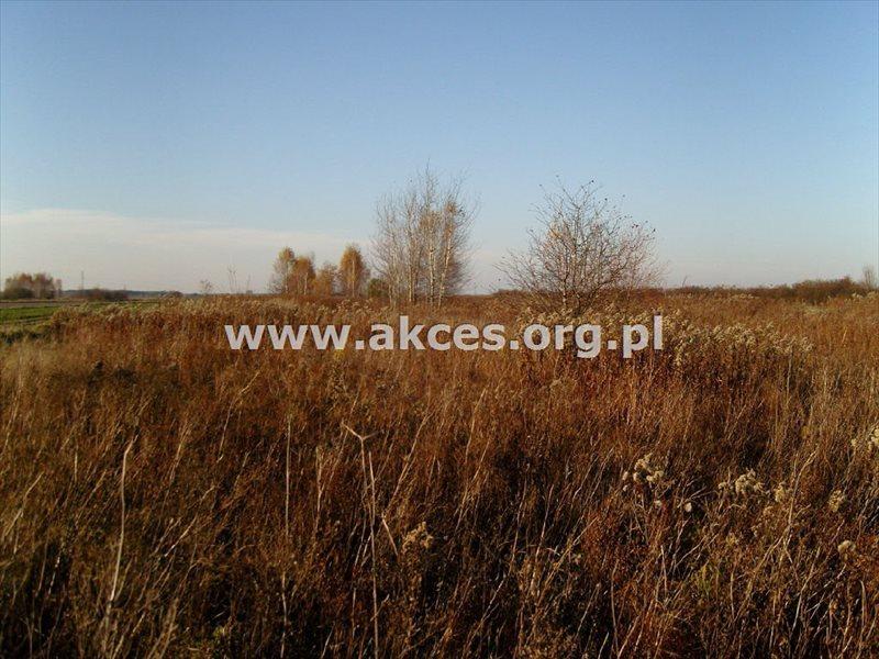 Działka rolna na sprzedaż Gołków  1261m2 Foto 6