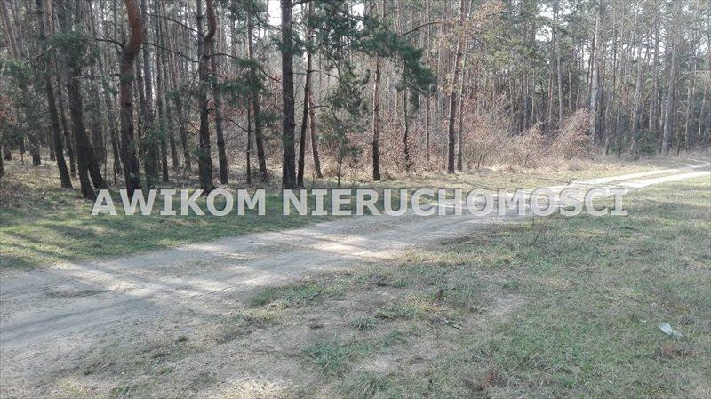 Działka leśna na sprzedaż Skierniewice  8837m2 Foto 1