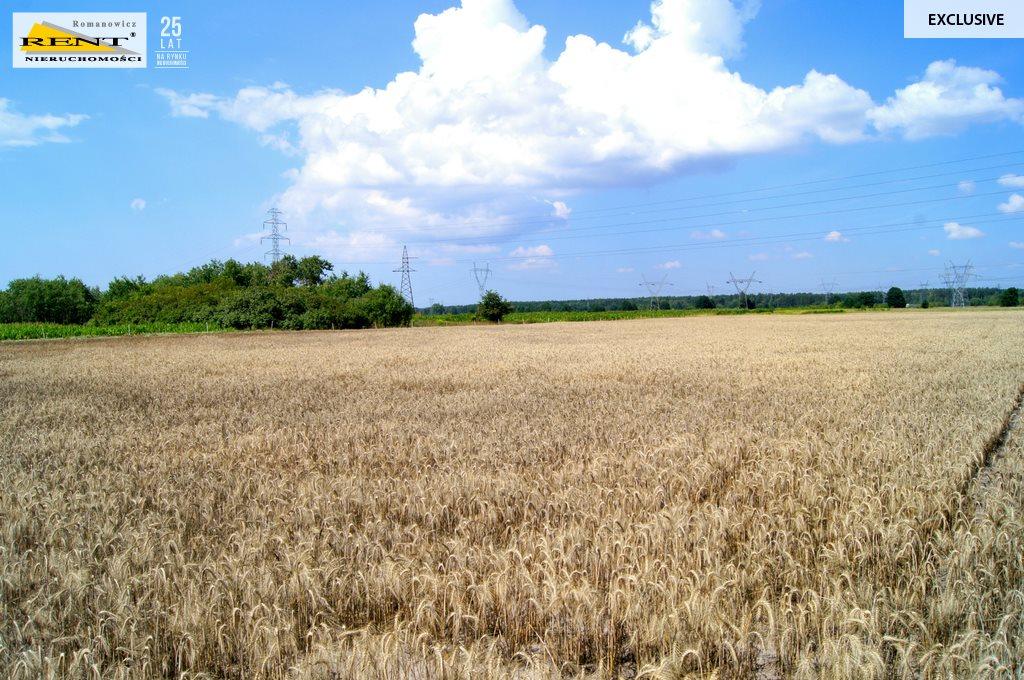 Działka rolna na sprzedaż Kobylanka  14458m2 Foto 1