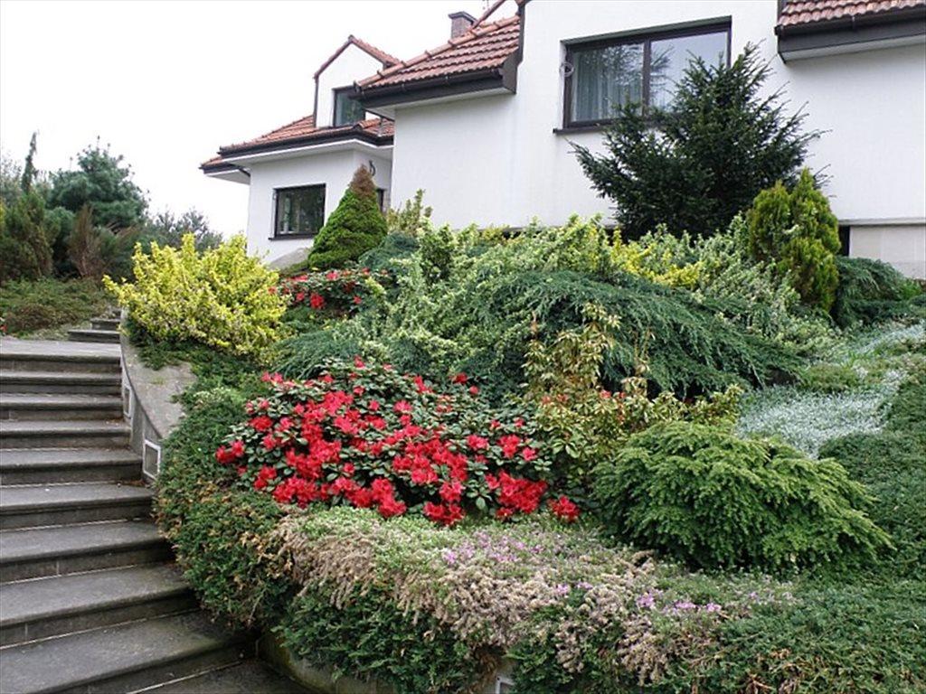 Dom na sprzedaż Łazy  900m2 Foto 3