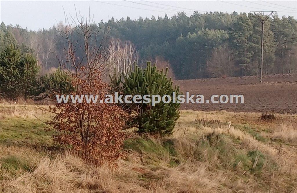 Działka budowlana na sprzedaż Kartuzy, Kiełpino, Energetyków  3761m2 Foto 5