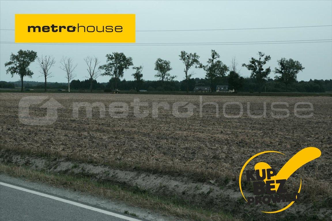 Działka rolna na sprzedaż Borowa, Długołęka  34300m2 Foto 1