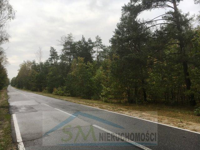 Działka leśna na sprzedaż Serock, las  3000m2 Foto 1