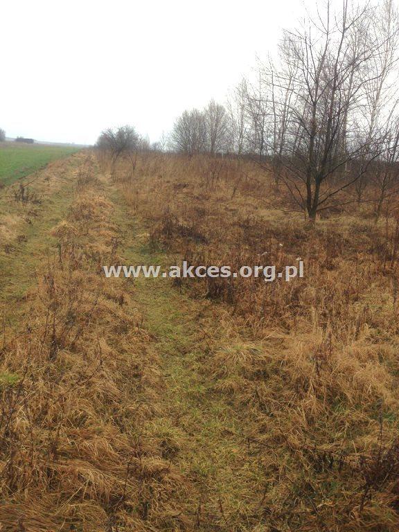 Działka rolna na sprzedaż Gołków  1261m2 Foto 10