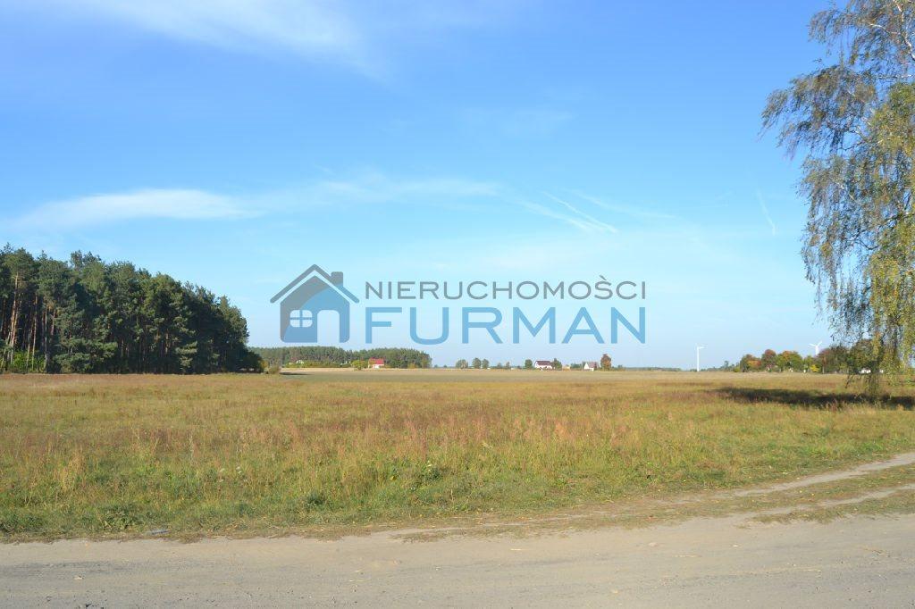 Działka rolna na sprzedaż Gościejewo  45100m2 Foto 5