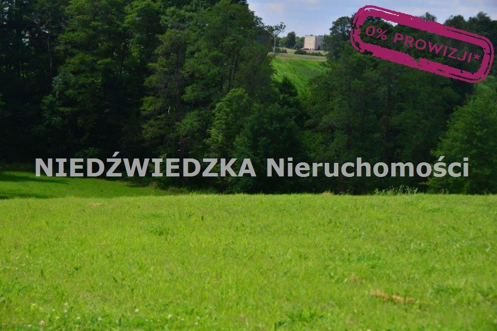 Działka budowlana na sprzedaż Mikołów, Mokre  12507m2 Foto 7