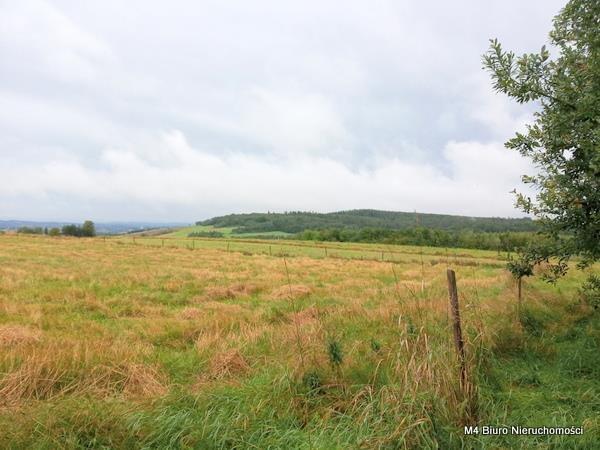 Działka rolna na sprzedaż Łajsce  8500m2 Foto 3