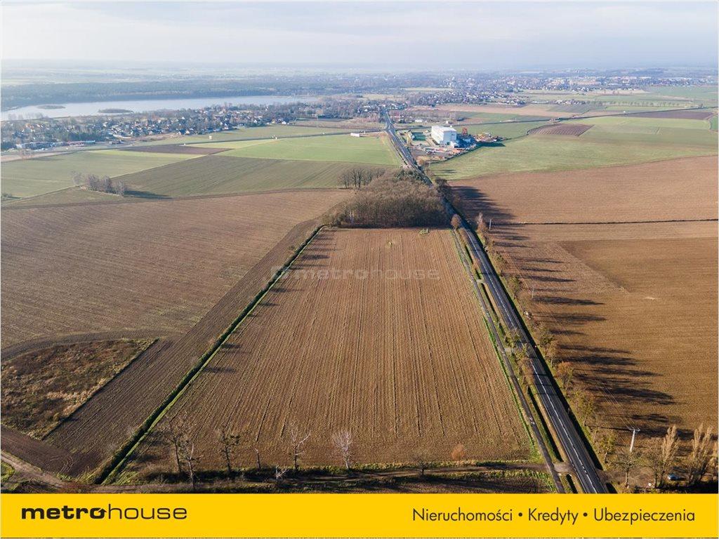 Działka rolna na sprzedaż Bogdańczowice, Kluczbork  57700m2 Foto 4