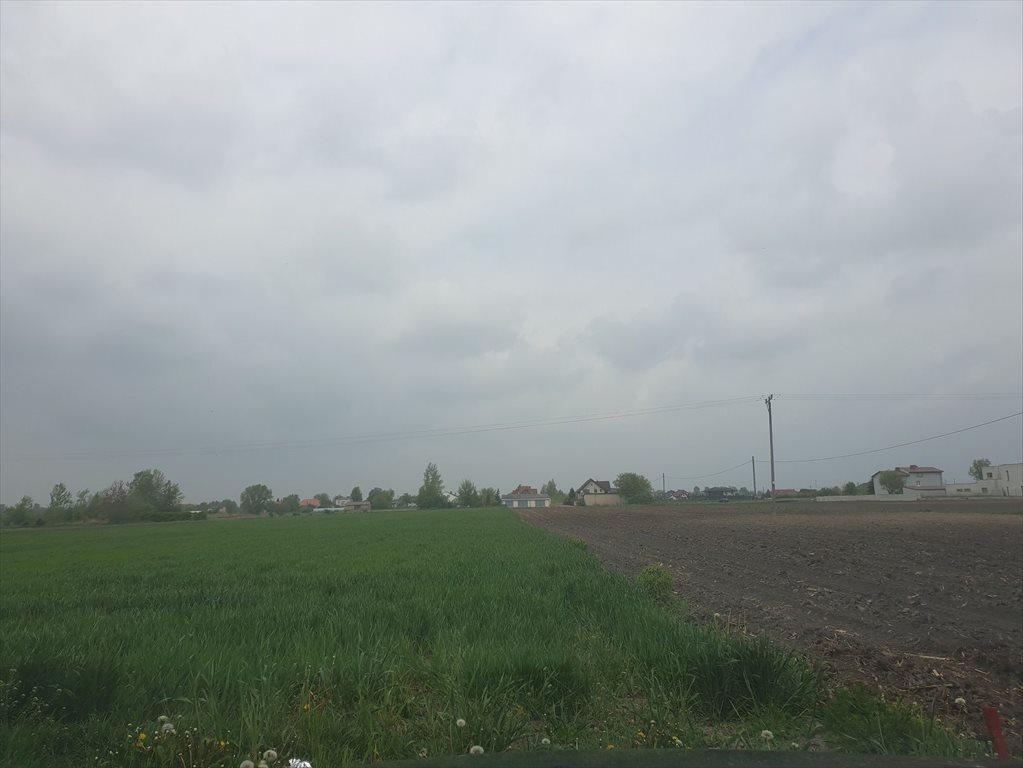 Działka rolna na sprzedaż Topolin  3000m2 Foto 3