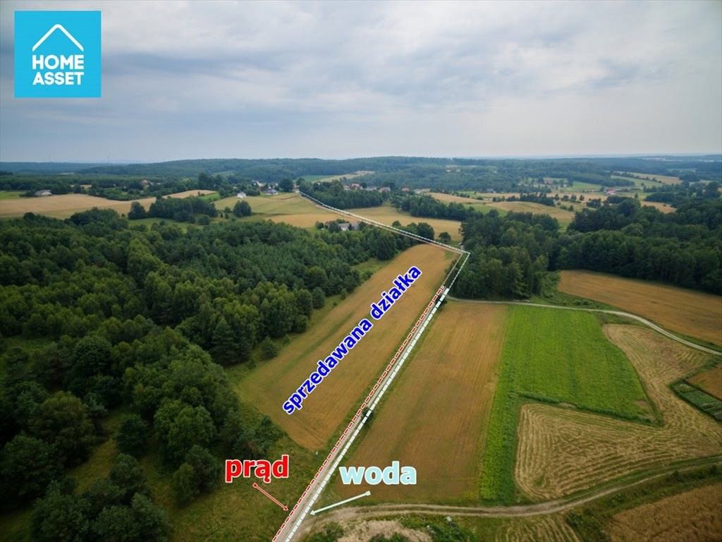 Działka rolna na sprzedaż Błotnia  9300m2 Foto 2