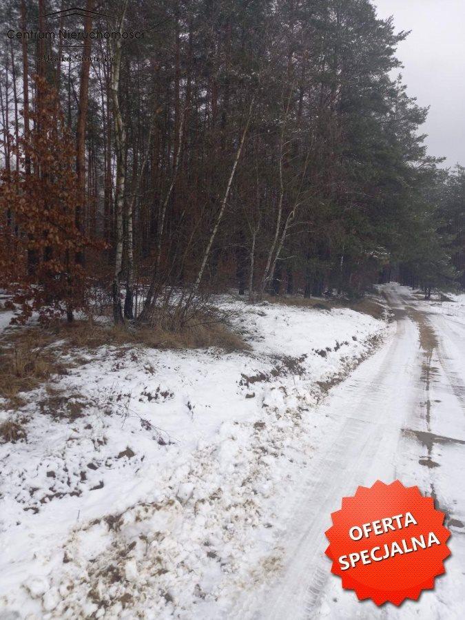 Działka leśna na sprzedaż Zawada  4492m2 Foto 2