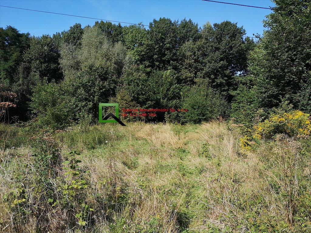 Działka budowlana na sprzedaż Sułków  800m2 Foto 5