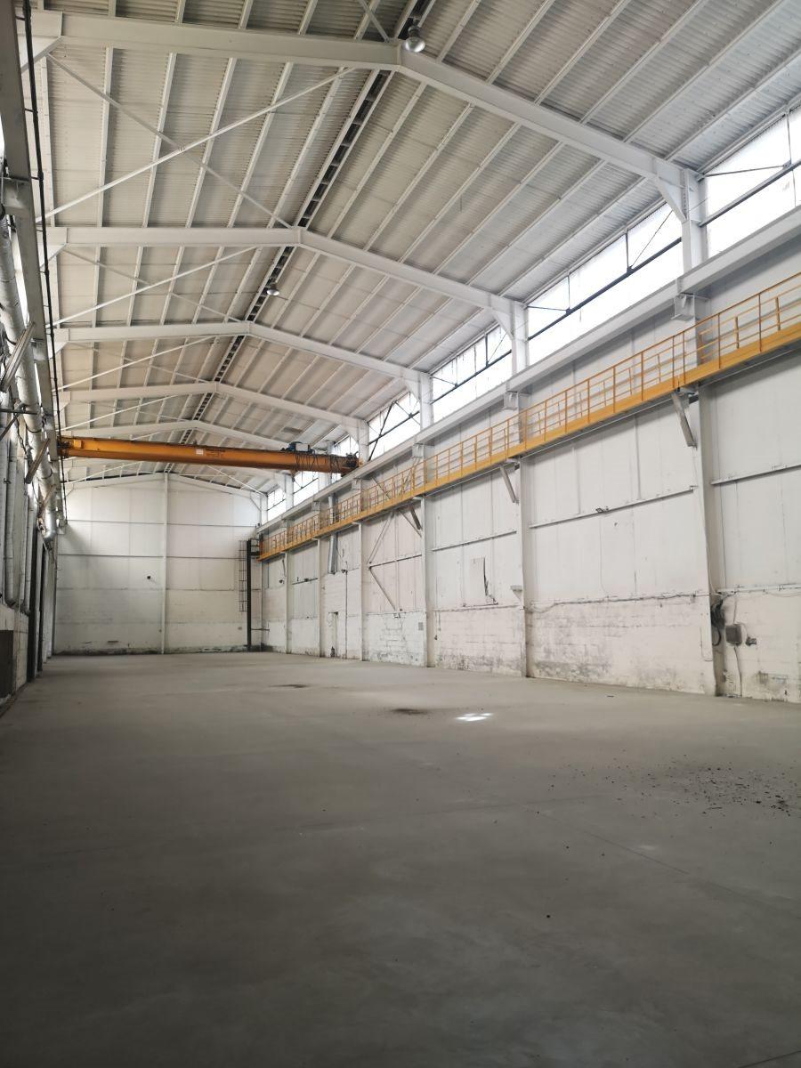 Lokal użytkowy na sprzedaż Mysłowice  1300m2 Foto 7