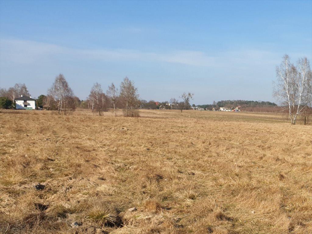 Działka rekreacyjna na sprzedaż Natolin, Nowosolna  4718m2 Foto 2