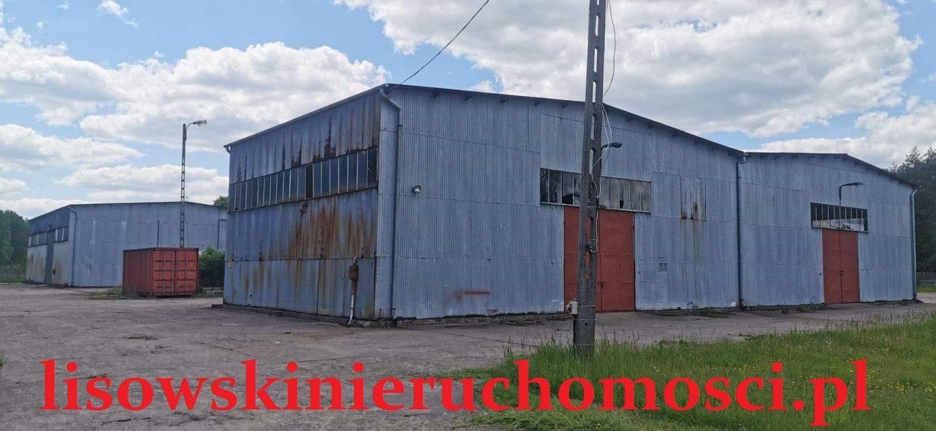 Działka przemysłowo-handlowa na sprzedaż Dąbrówka Wielka  79240m2 Foto 1