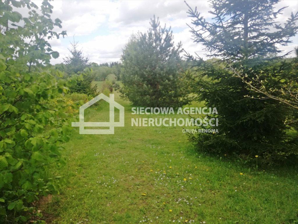 Działka leśna na sprzedaż Żuławka  1730m2 Foto 5