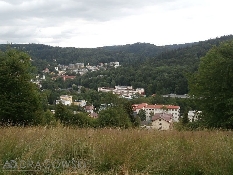 Lokal użytkowy na sprzedaż Krynica-Zdrój  523m2 Foto 3