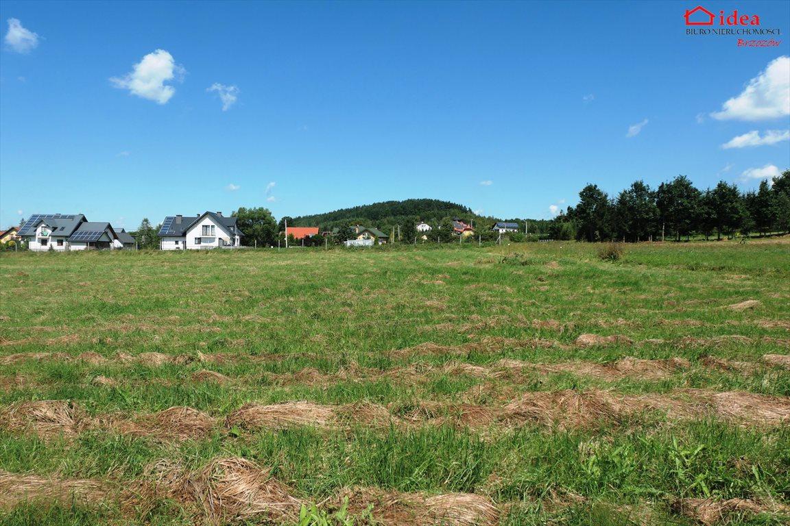 Działka budowlana na sprzedaż Stara Wieś  1036m2 Foto 3